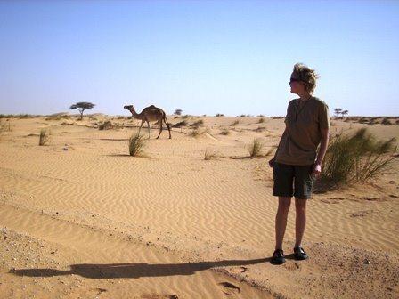 Minu ghana, kaamel,kõrbes, sahara, aafrika, raamat